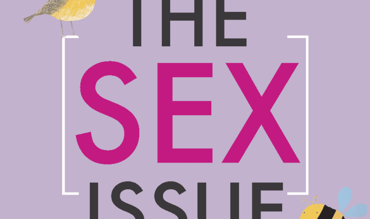 sex_issue_COVER